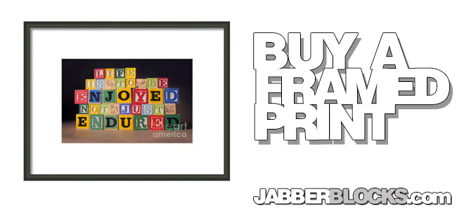 Life Is To Be Enjoyed Not Just Endured Framed Print